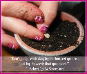 dental marketing is like planting seeds