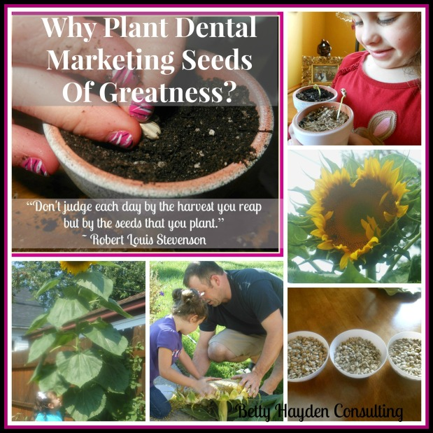 Why Plant Dental Marketing Seeds Of Greatness?